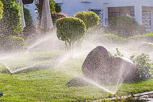 Home Irrigation System Springfield IL