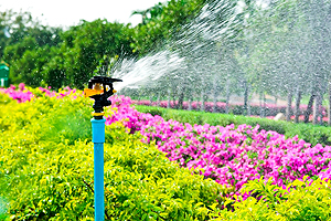 Sprinkler Systems Champaign IL