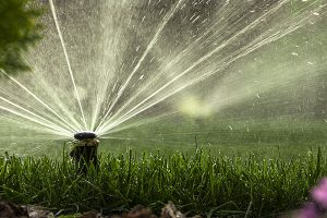 Winterize Lawn Sprinkler System Bloomington IL