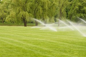 Lawn Sprinkler Systems Champaign IL