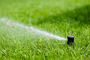 Yard Sprinklers Champaign IL