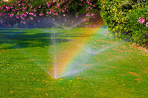 Repair Sprinkler Champaign IL, repair sprinkler, repair sprinklers, sprinkler repair, sprinkler replacement, irrigation repair, irrigation replacement, irrigation system repair, sprinkler system repair