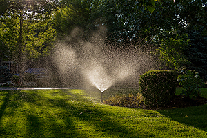 Residential Irrigation Champaign IL