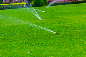 Irrigation Services Champaign IL