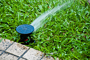 Repair Automatic Sprinkler Champaign IL, repair automatic sprinkler, automatic sprinkler repair, sprinkler repair, repair sprinkler, irrigation repair, irrigation system repair, sprinkler system repair