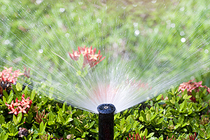 Water Sprinkler Champaign IL