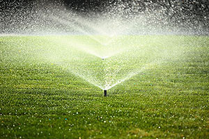 Lawn Irrigation System Champaign IL
