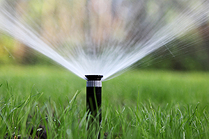Home Irrigation System Champaign IL