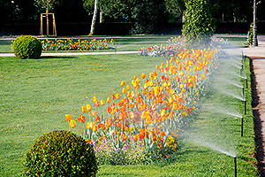 Flowers being watered by sprinklers installed by an Irrigation Company in Decatur IL