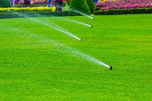 Top Best Champaign IL Lawn Irrigation Services