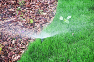 Best Sprinkler Companies Champaign IL