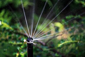 Best Sprinkler Repair Champaign IL, sprinkler repair, irrigation repair, irrigation service, sprinkler service