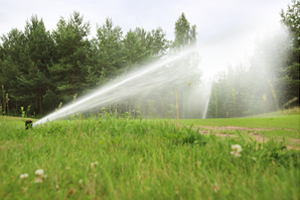 Irrigation Companies Champaign IL, irrigation companies, sprinkler companies, irrigation services, sprinkler services