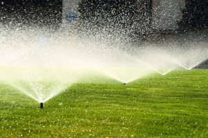 A sprinkler system watering a lawn, installed by an Irrigation Company in Bloomington IL