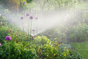 Commercial Irrigation System in Bloomington IL watering a lawn and garden