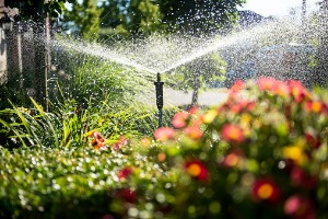 Sprinkler System in Decatur IL watering a garden