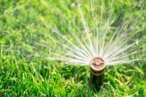A close up of a sprinkler head, installed by Irrigation Contractors in Decatur IL