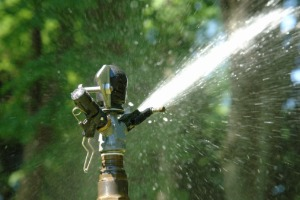 Close Up of Residential Sprinkler System for Springfield IL