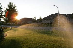 Sunrise View of Residential Sprinkler System for Springfield IL