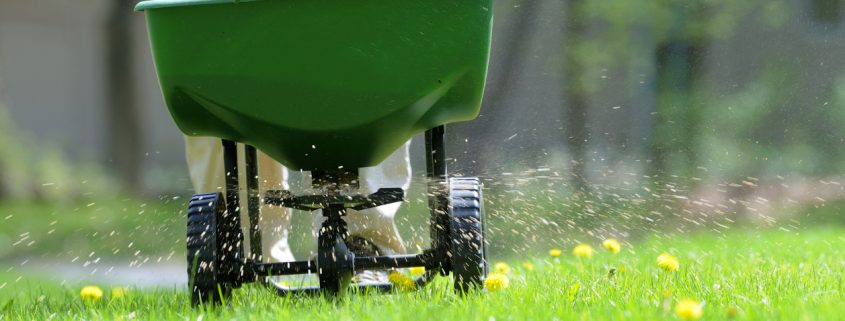 Prep Your Yard for the Seasons to Come!